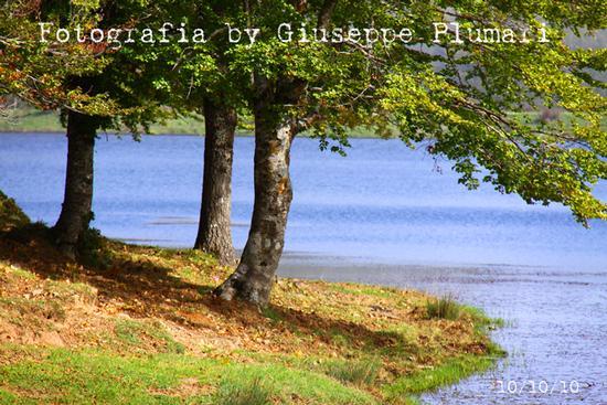 lago dei nebrodi (2936 clic)