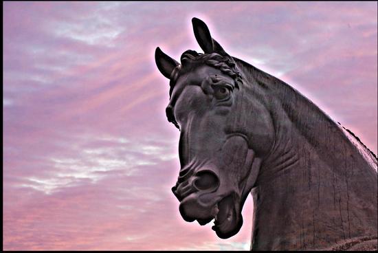 Il Cavallo di Leonardo - Milano - inserita il 29-Sep-16