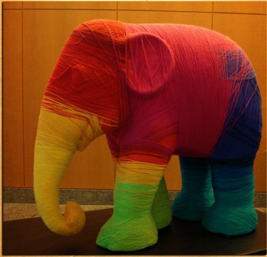 Wrapping an Elephant by Andrea Rovatti - Milano (1673 clic)
