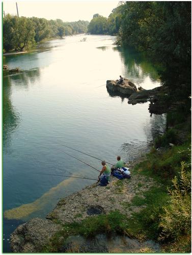 Tranquillamente pescando sul fiume Adda - Capriate san gervasio (1657 clic)