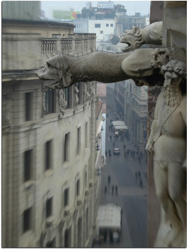 Dal Duomo di Milano (2461 clic)