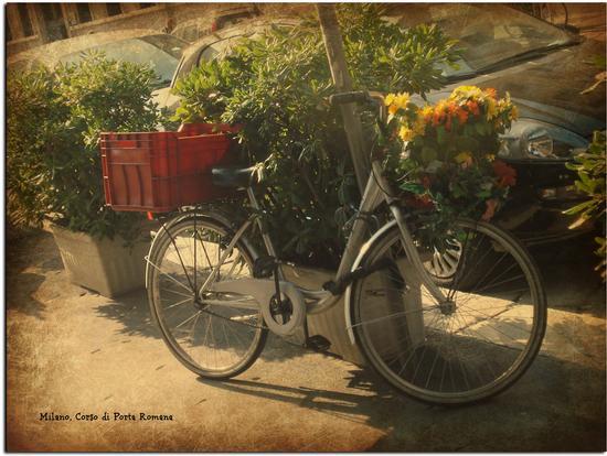 Due ruote - Milano (1015 clic)