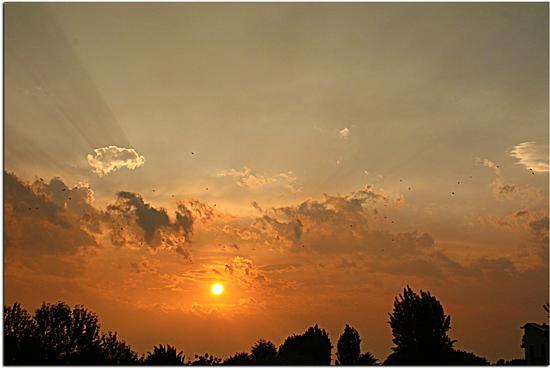 Che tramonto...... - Melzo (1862 clic)