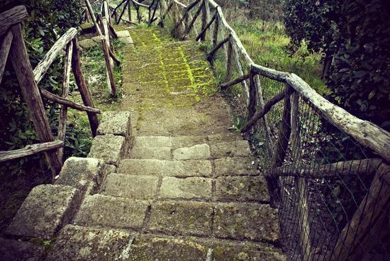Parco del Poggio - Napoli (3326 clic)