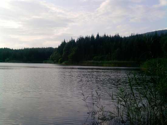 Lago di Tavianella - Montepiano (3146 clic)