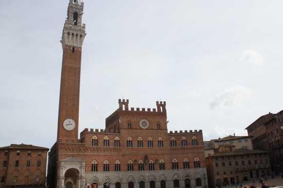 Palazzo Pubblico  - Siena (1462 clic)