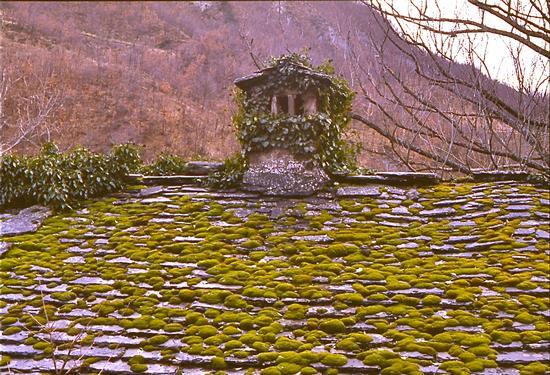 tetto con camino (Trappisa di sotto) - Bagno di romagna (2553 clic)