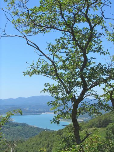 lago di Montedoglio detto anche della Madonnuccia - Pieve santo stefano (1963 clic)