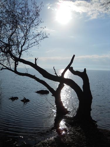 tramonto sul lago - Bracciano (1991 clic)