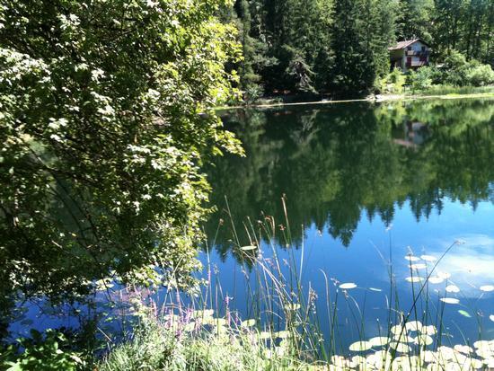 Lago di Cei - Villa lagarina (2025 clic)