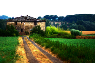Panorama - Montalcino (1966 clic)