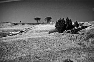 Panorama - Montalcino (1643 clic)