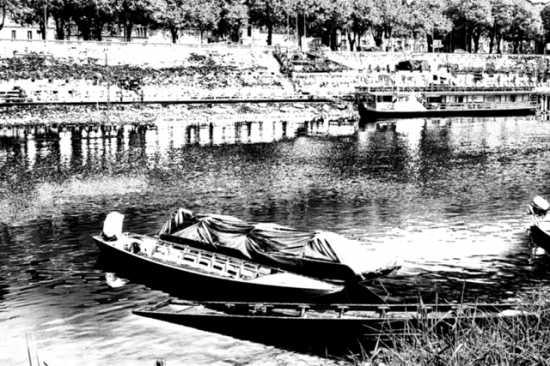 Il Ticino - Pavia (1872 clic)