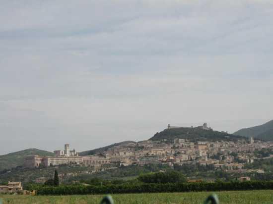 Assisi  (1730 clic)