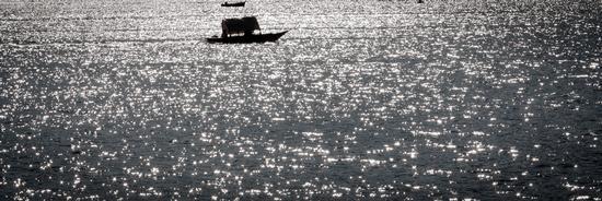 Sulle acque del lago - Como (930 clic)