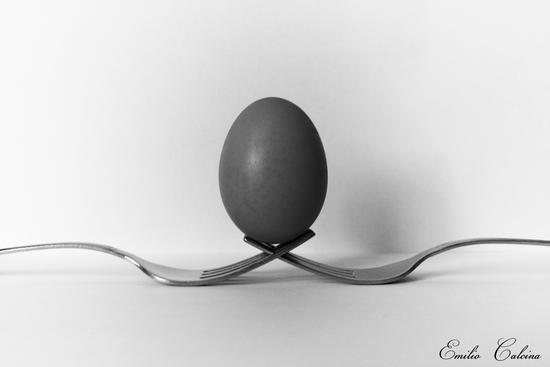 L'uovo - Villa guardia (1073 clic)