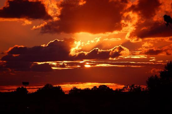 tramonti pisani (4014 clic)
