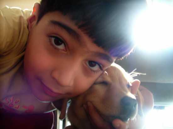 I due cuccioli - Messina (2394 clic)