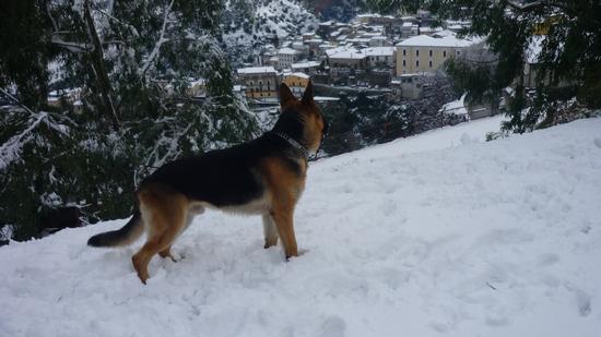 A noi piace la neve - Rossano 16.12.2010 (2271 clic)