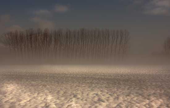 nevicata a Piossasco (2603 clic)
