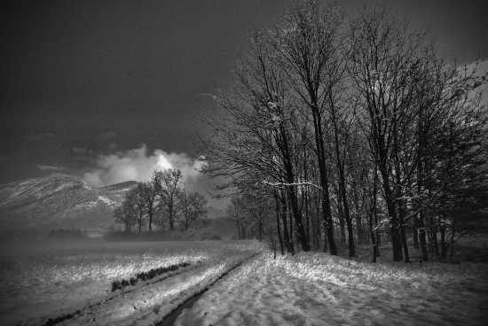 inverno 2009-2010 - Piossasco (2654 clic)