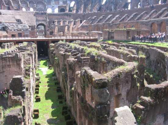 Hic sunt leones - Roma (2524 clic)