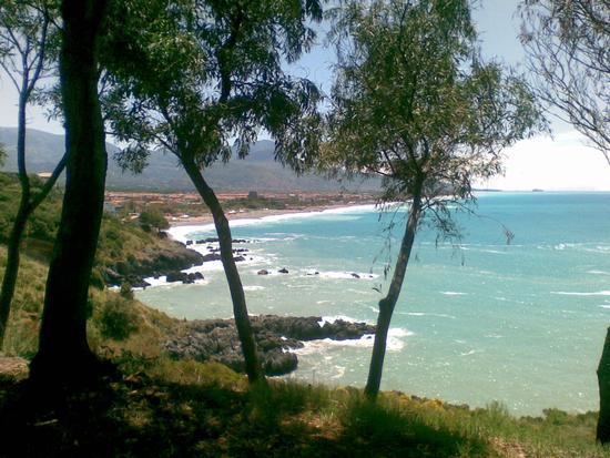 scogliera del carpino - Scalea (2851 clic)