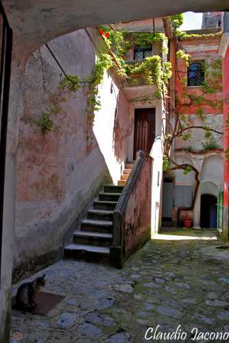 Scorcio - Ravello (2793 clic)