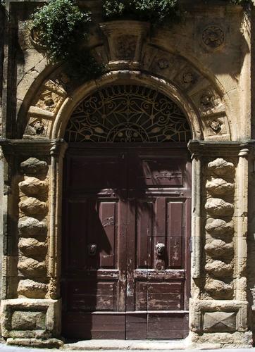 Erba Di Vintu / parietaria - Assoro (3443 clic)