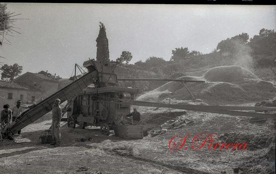 Trebbiatura 1982 - Nicosia (7 clic)