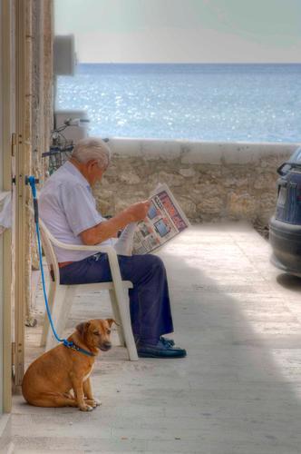 L'amore per la lettura libera la mente,ma non il cane - POZZALLO - inserita il 07-Feb-11