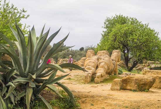 Valle dei Templi - Agrigento (114 clic)