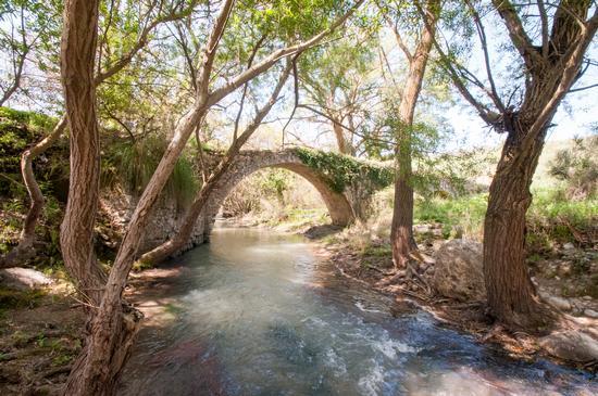Ponte Romano - Blufi (377 clic)