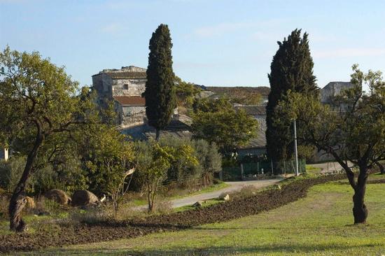 Grottadacqua-Robbaranni - Serradifalco (3771 clic)