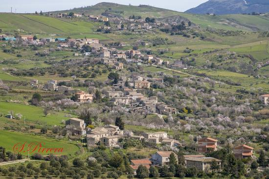 Borgo San Giovanni - Petralia soprana (302 clic)