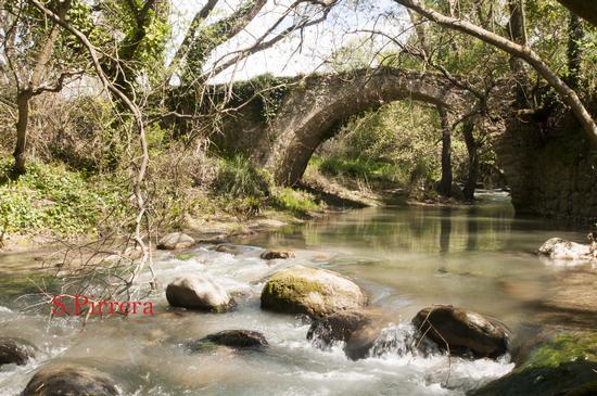 Ponte Romano - Blufi (287 clic)