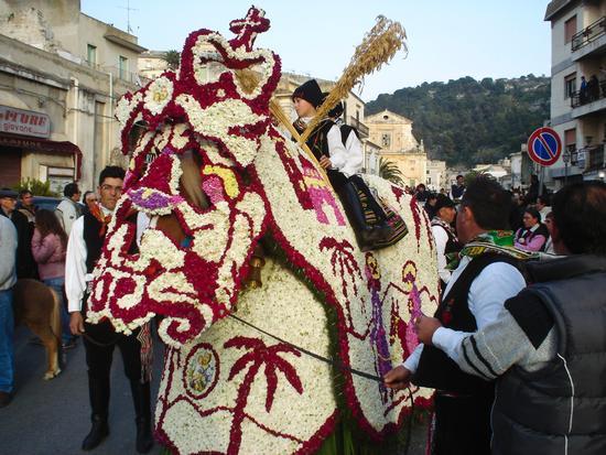 Cavalcata di San Giuseppe - Scicli (3288 clic)