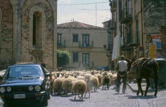 Tempi andati 1988 - Castelbuono (1012 clic)