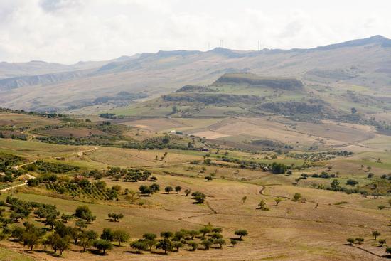 Monte castellazzo - Marianopoli (339 clic)