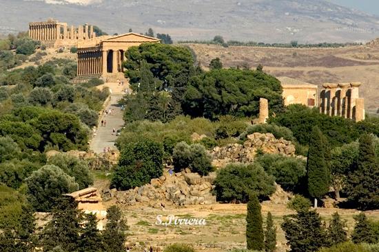 Valle dei Templi - Agrigento (7898 clic)