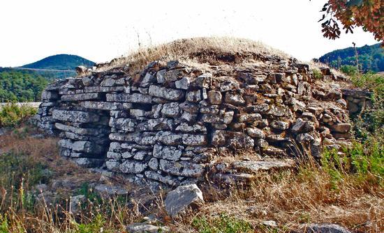 Tholos - Floresta (5505 clic)