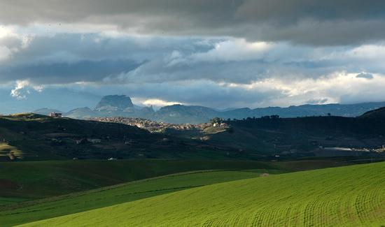 Montedoro (3787 clic)