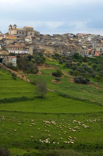 Serradifalco la Bucolica (5193 clic)
