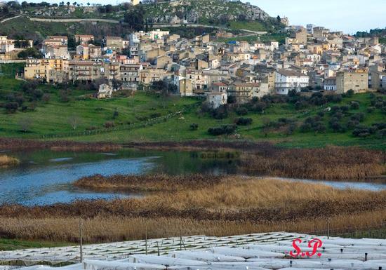 Lago & Uccelli - Serradifalco (5226 clic)