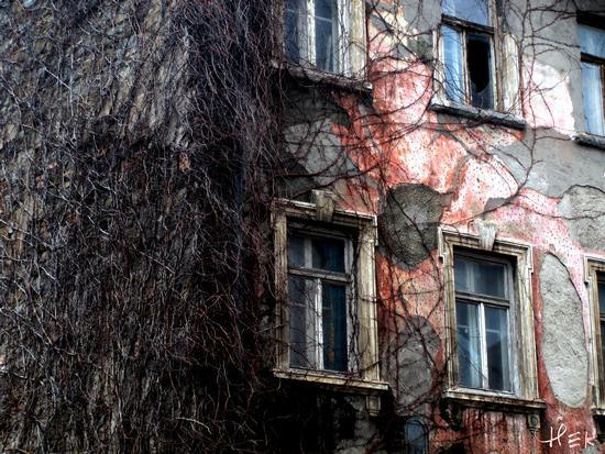 Verso la fine - Trieste (2915 clic)