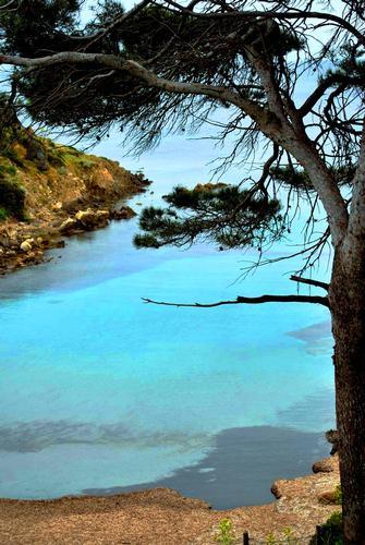 Scorcio marino - Asinara (2216 clic)
