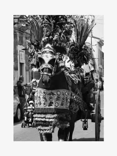 Festa di san Alfio - Mascalucia (2260 clic)