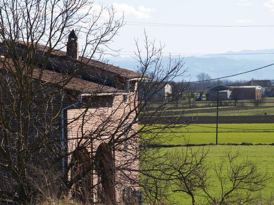 scorci della pianura padana - Casalmaggiore (1857 clic)