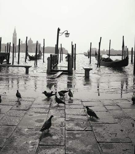 Venezia (1664 clic)
