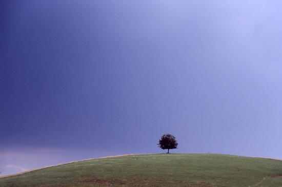 il solitario - Erbezzo (5821 clic)